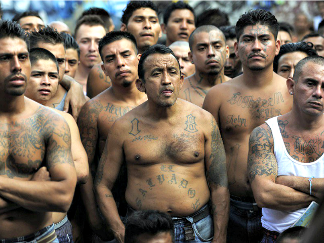 MS-13-Gang-Members-Getty-640x480