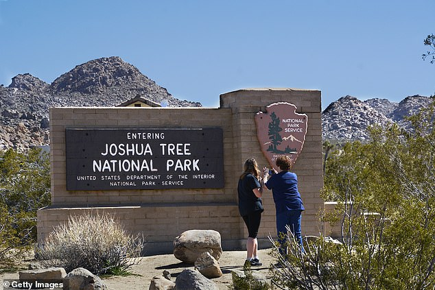 California will ban smoking on state parks and beaches starting next year under legislation signed by Gov. Gavin Newsom. Joshua Tree National Park is pictured