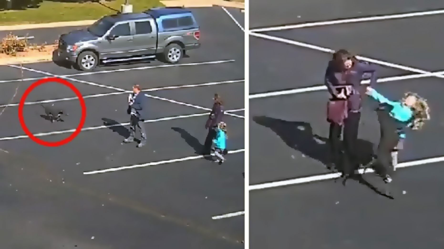 Surveillance footage shows a dog attack a child in a Colorado Springs, Colo. church parking lot