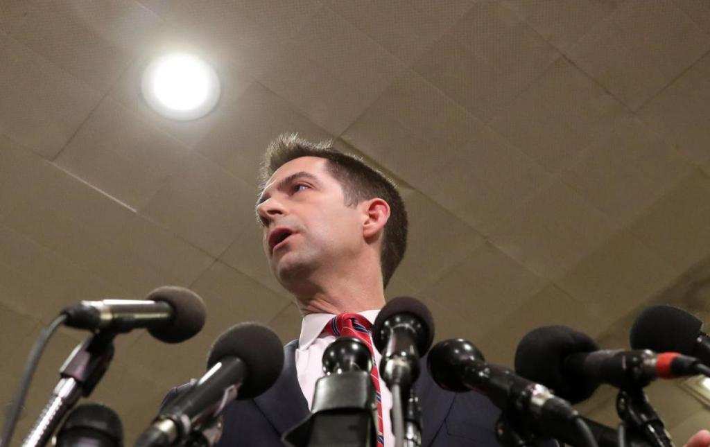 Arkansas GOP Sen. Tom Cotton on Capitol Hill (Mark Wilson/Getty Images)