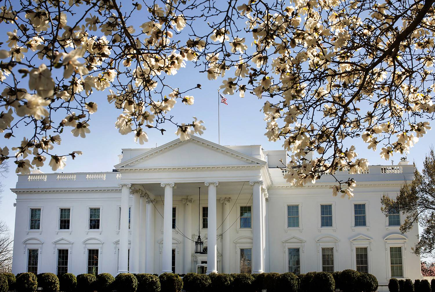 The White House North Lawn, March 26, 2019 on the North Lawn.