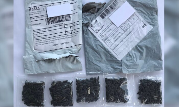 Two packages containing unknown seeds from China.