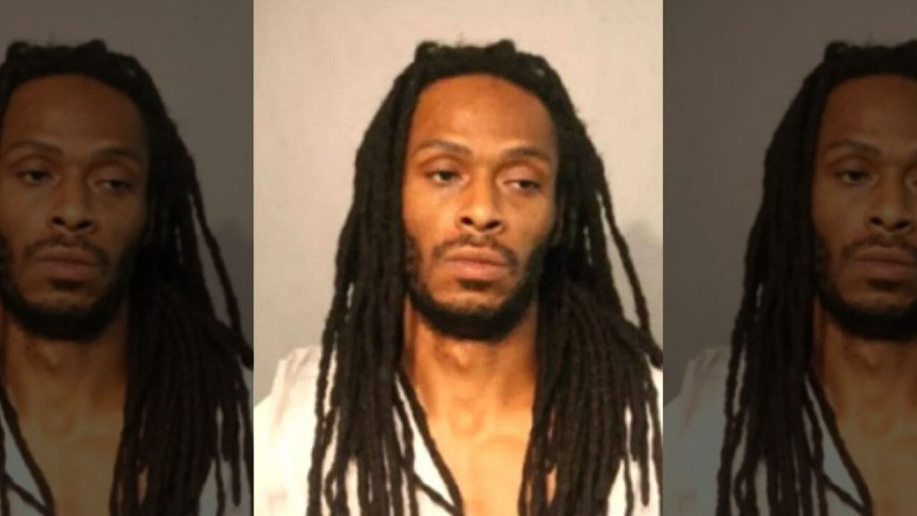 Darrell Johnson, 39, is accused of fatally shooting 9-year-old Janari Ricks in Chicago last week.