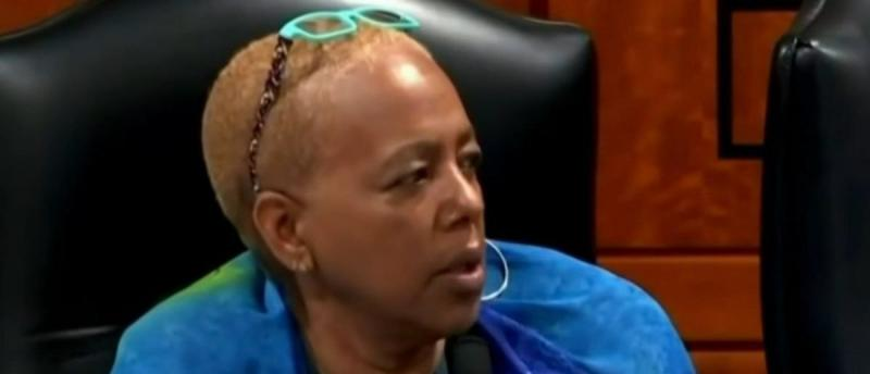 Screen Shot:Youtube:Democratic Michigan state representative Cynthia Johnson:Click On Detroit   Local 4   WDIV