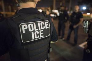 U.S. Immigration and Customs Enforcement (ICE) Officers. (ICE/Released)