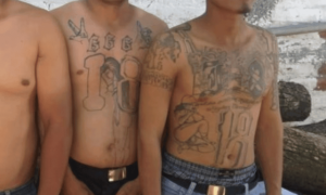 Members of the 18th Street gang. (U.S. Department of Justice photo/Released)